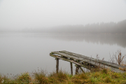 A pond on a foggy day